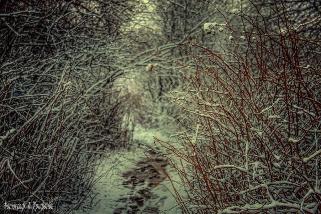 Зима в Муроме и окрестностях 75