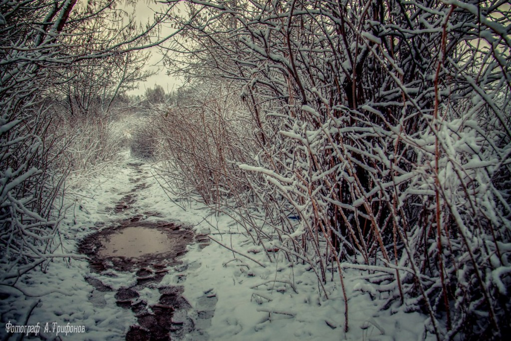 Зима в Муроме и окрестностях 76