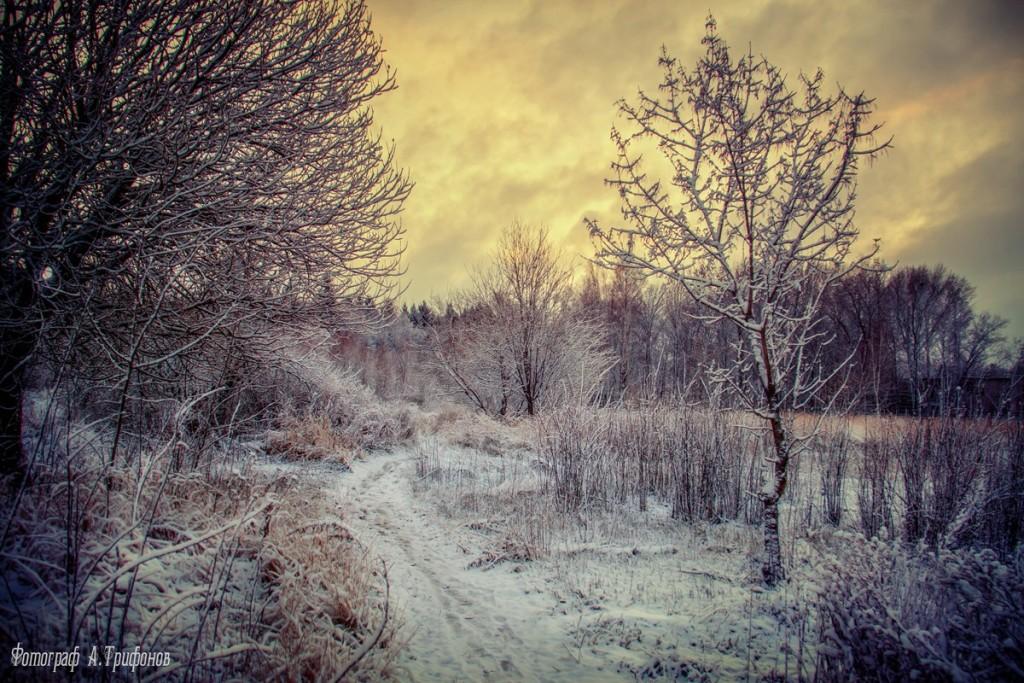 Зима в Муроме и окрестностях 77