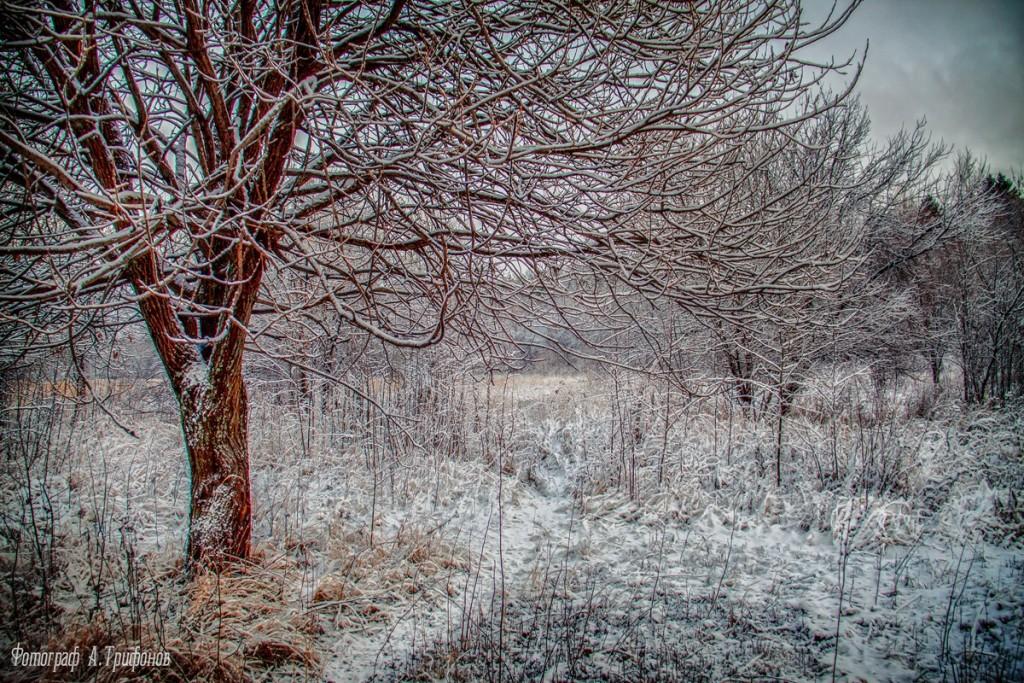 Зима в Муроме и окрестностях 78