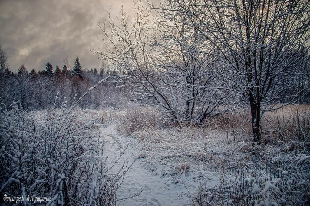 Зима в Муроме и окрестностях 79