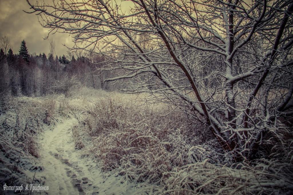 Зима в Муроме и окрестностях 80