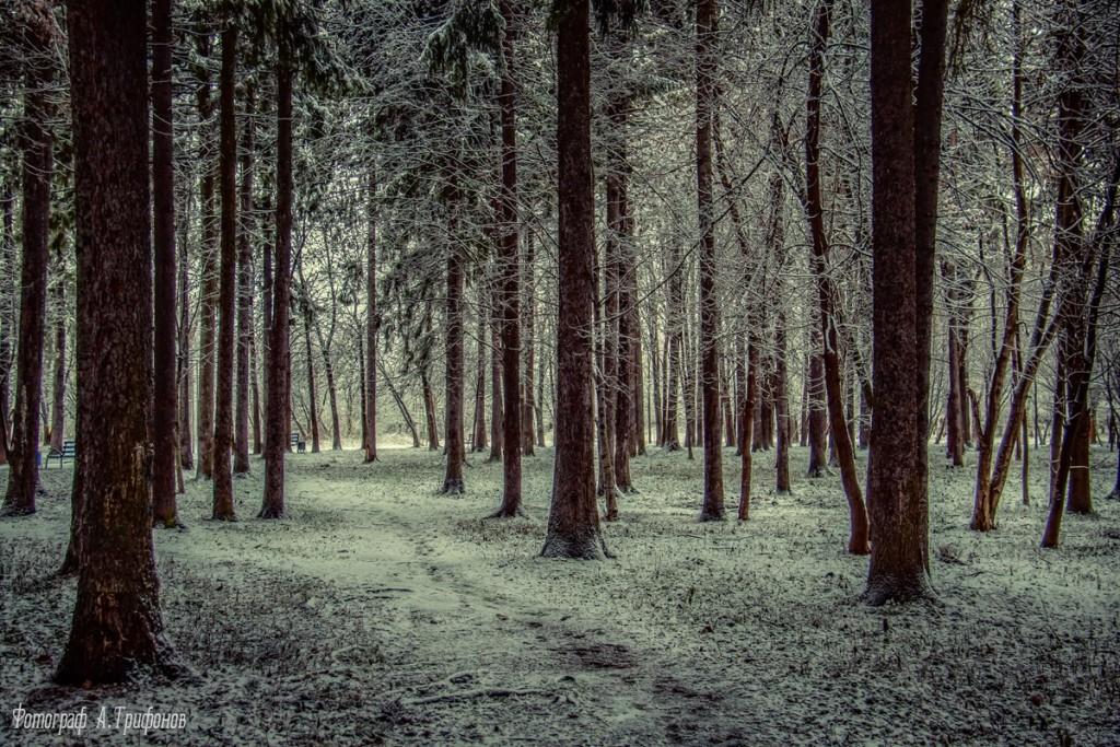 Зима в Муроме и окрестностях 81