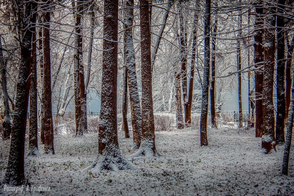 Зима в Муроме и окрестностях 82