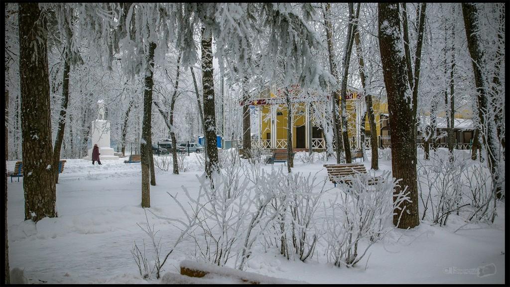 Ковров, зимний парк 03