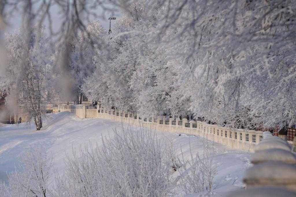 Красивая зима во Владимире 2018 04