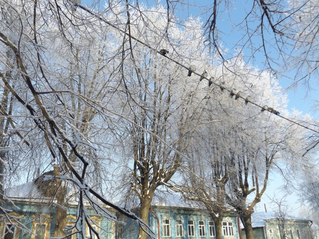 Морозная синь во Владимире 03