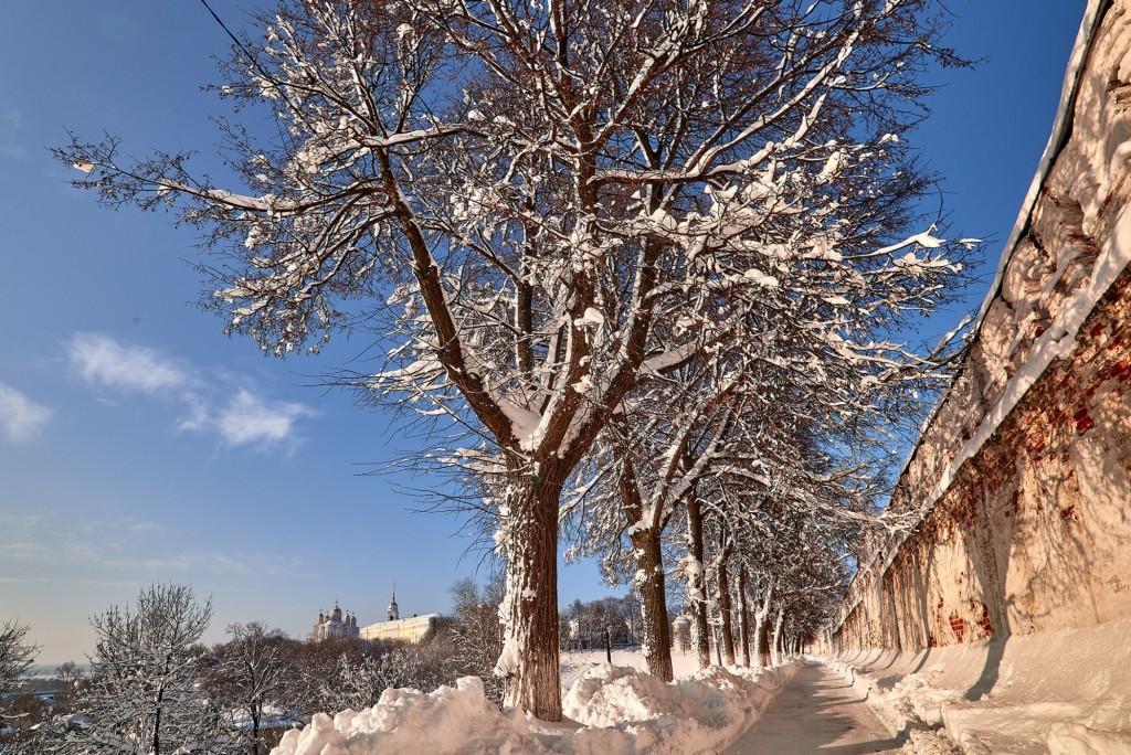Морозный денек во Владимире - продолжение ( февраль 2018 ) 06
