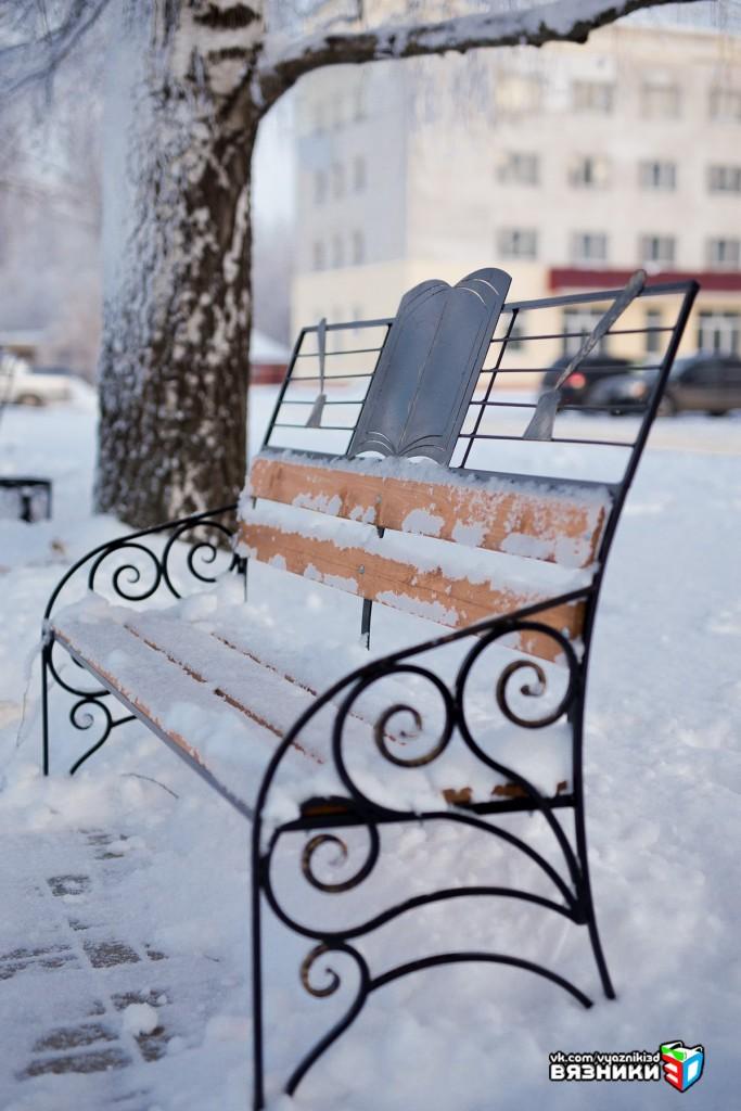 Морозный день в Вязниках 02