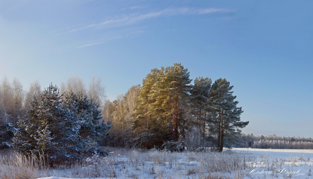 Последние, зимние деньки (Вязниковский р-он)