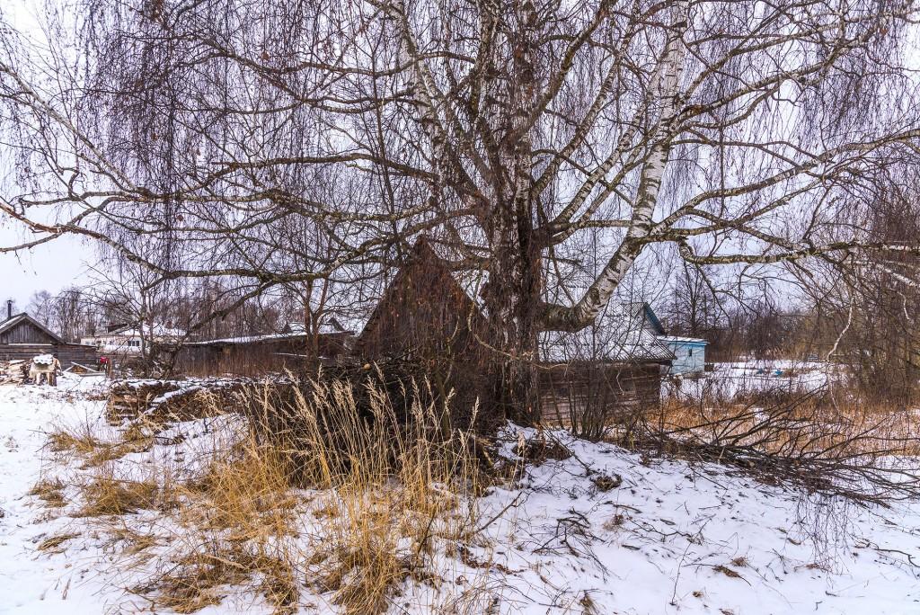 Русская глубинка ( Вязниковский район, январь 2018 ) 03
