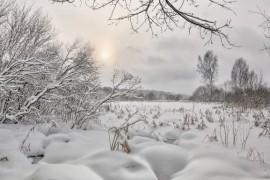 Снежное начало февраля в Александрове, 02.02.2018