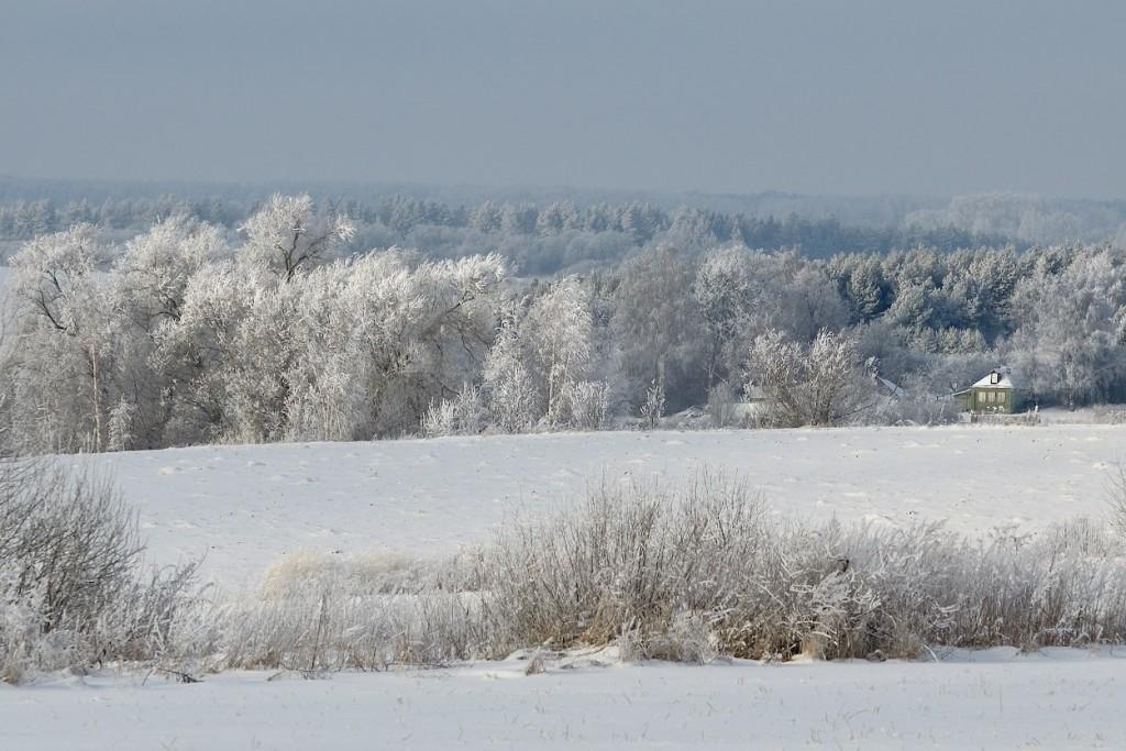 Собинский район зимой 03