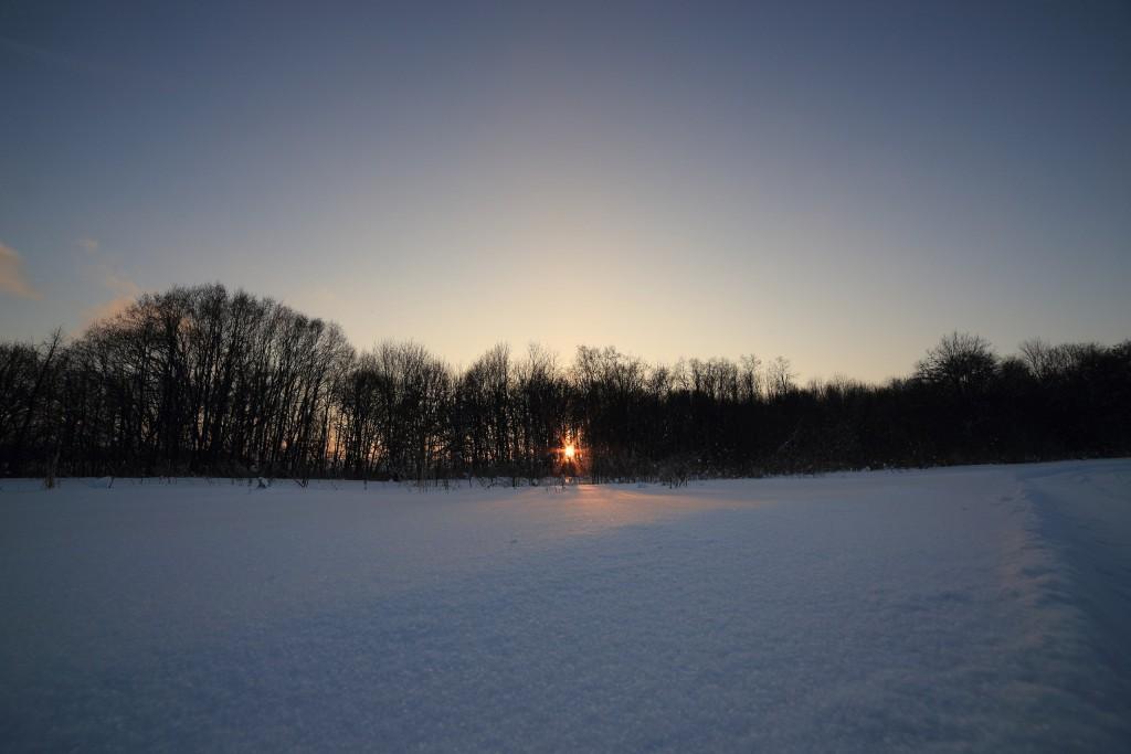 Февральская прогулка в парке Дружба 06