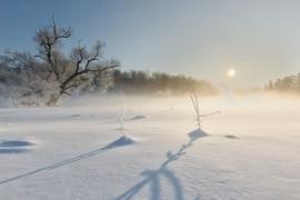 Февральское утро на реке Серой, Александров