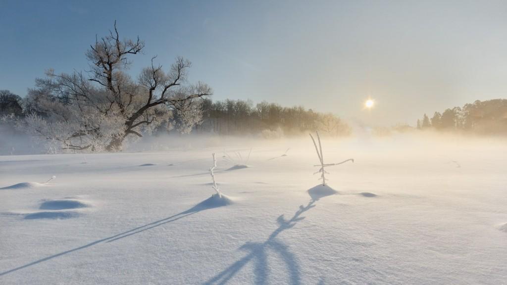 Февральское утро на реке Серой, Александров 01
