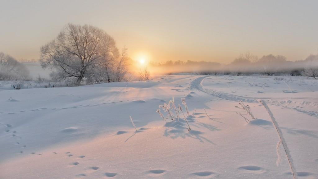 Февральское утро на реке Серой, Александров 05