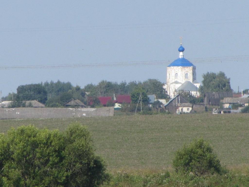 Церковь Казанской иконы Божией Матери и Илии Пророка, с. Янево 02