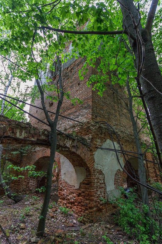 Церковь Церковь Иоанна Предтечи (1778), Собинский район 05