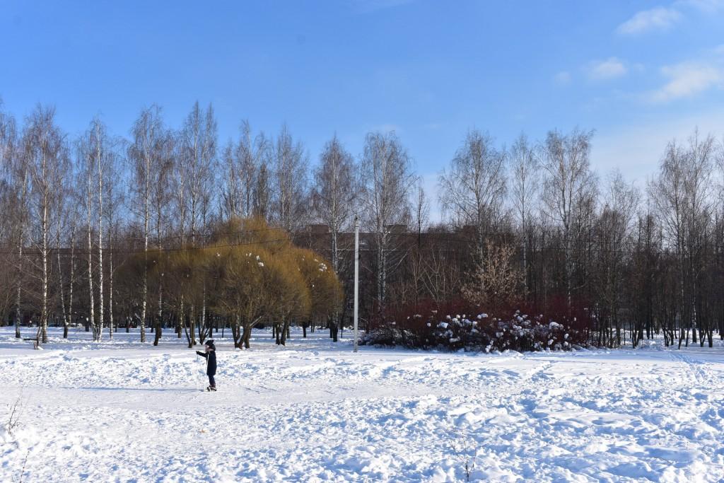 Март в парке Добросельский. Город Владимир. 04
