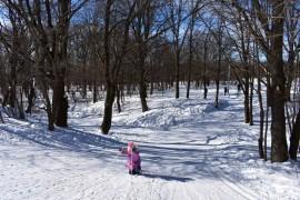 Прогулка по парку «Дружба». 10 марта, город Владимир.