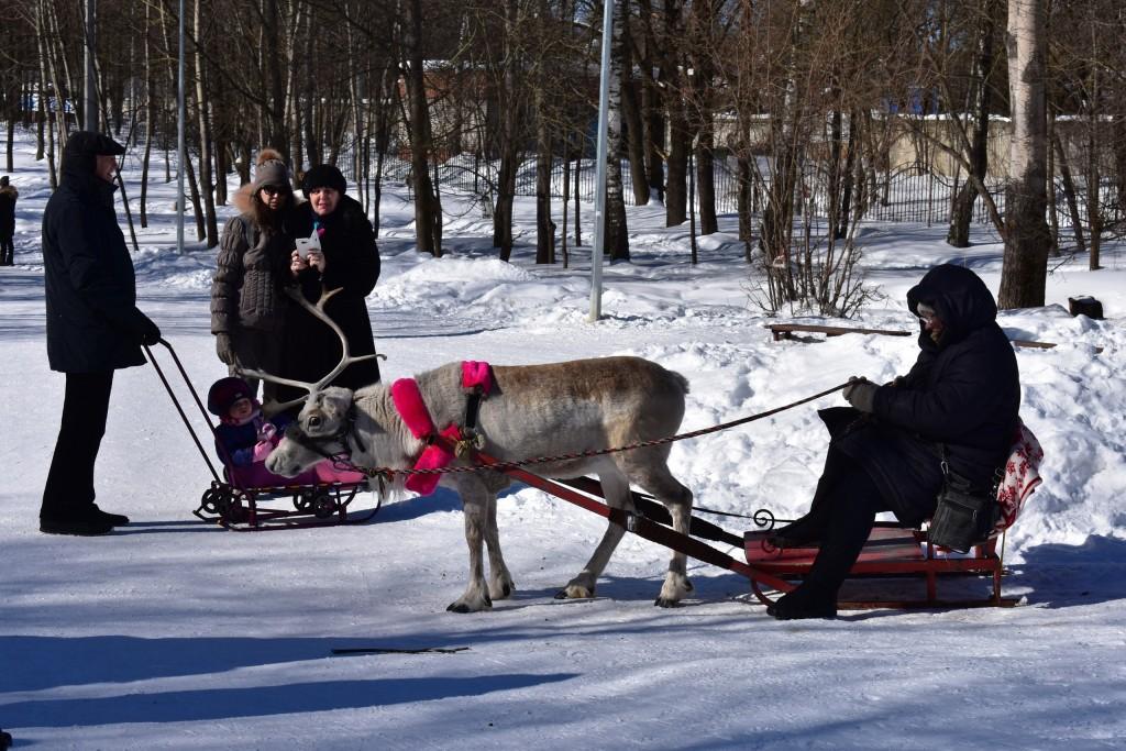 Прогулка по парку Дружба. 10 марта, город Владимир 05