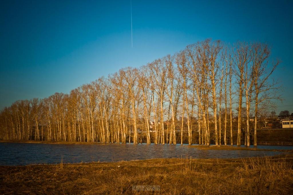 Апрельский рассвет Покрова На Нерли 12