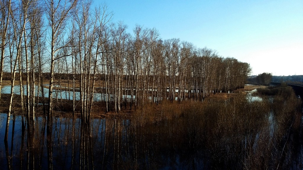 Весенние пейзажи реки Нерль 02
