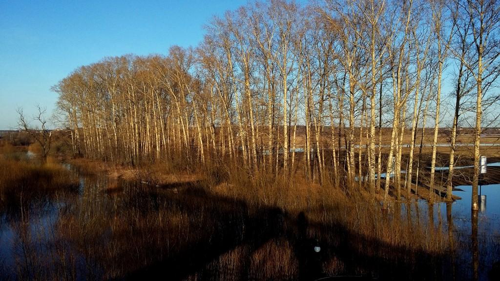 Весенние пейзажи реки Нерль 03