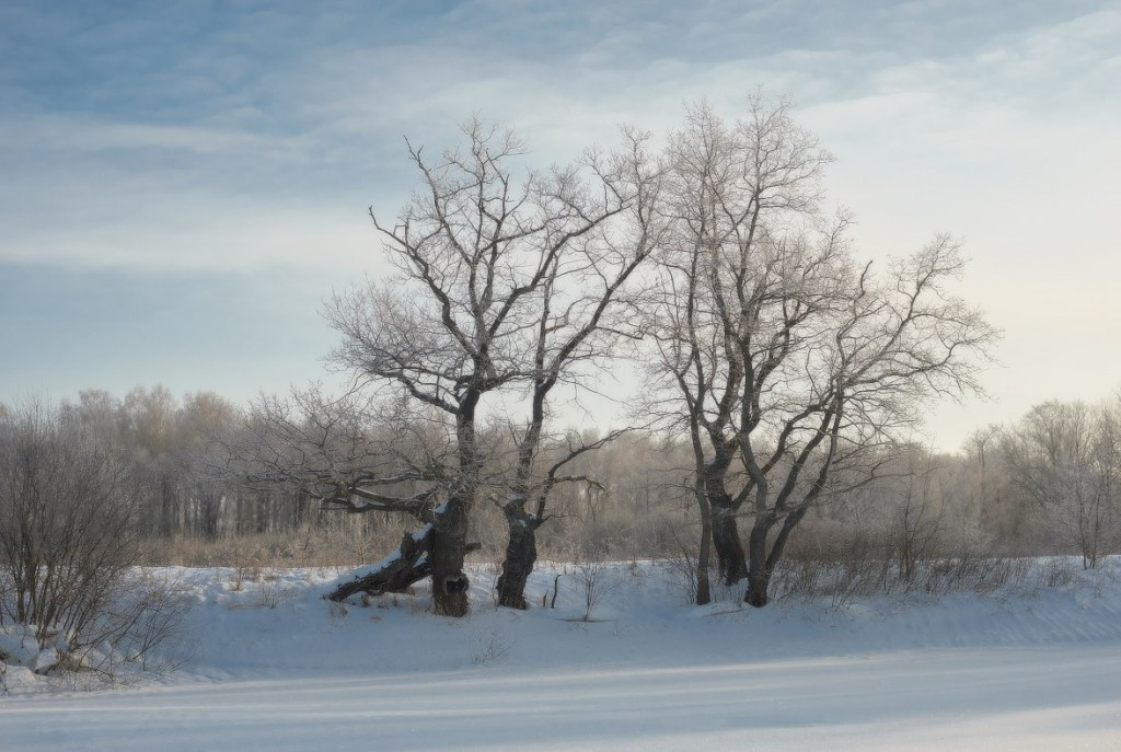 Зима в Вязниковском районе (2018) 10