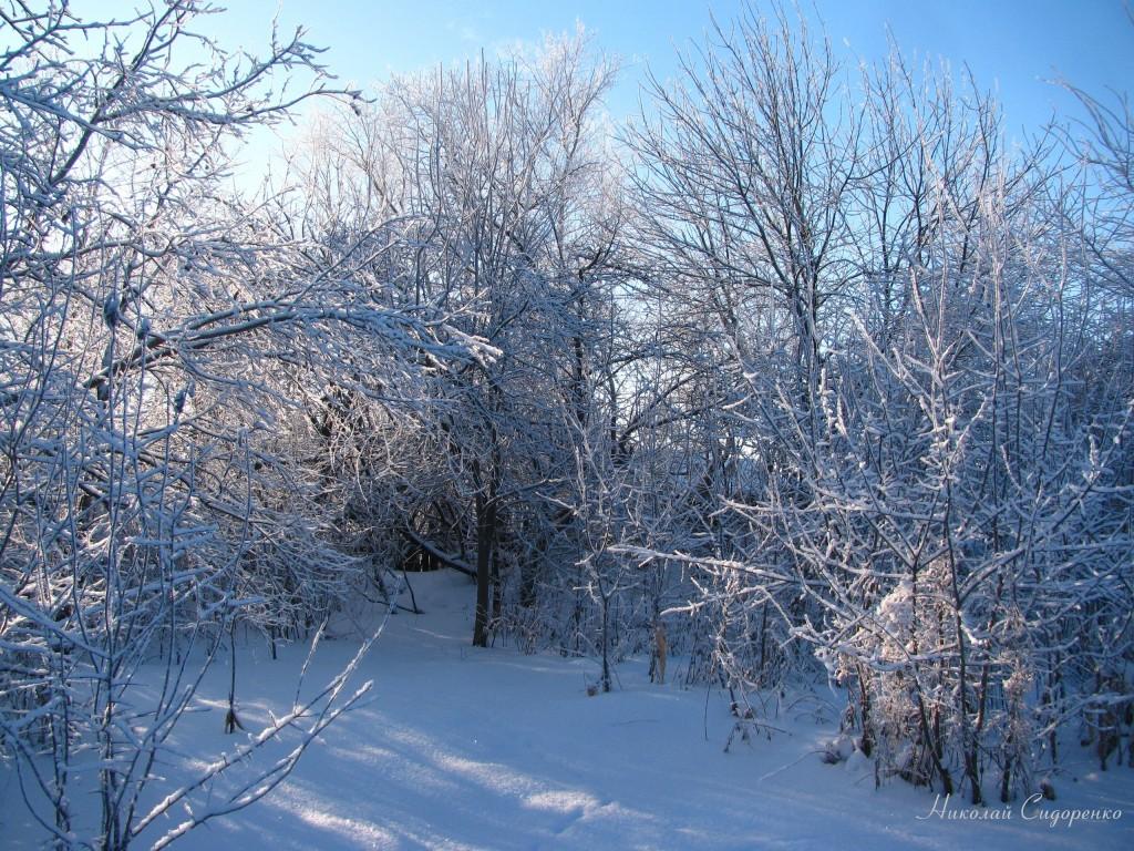 Морозный март в Суздале 04