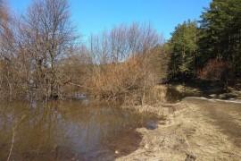 Разлив Клязьмы близ д. Любцы, Ковровский район