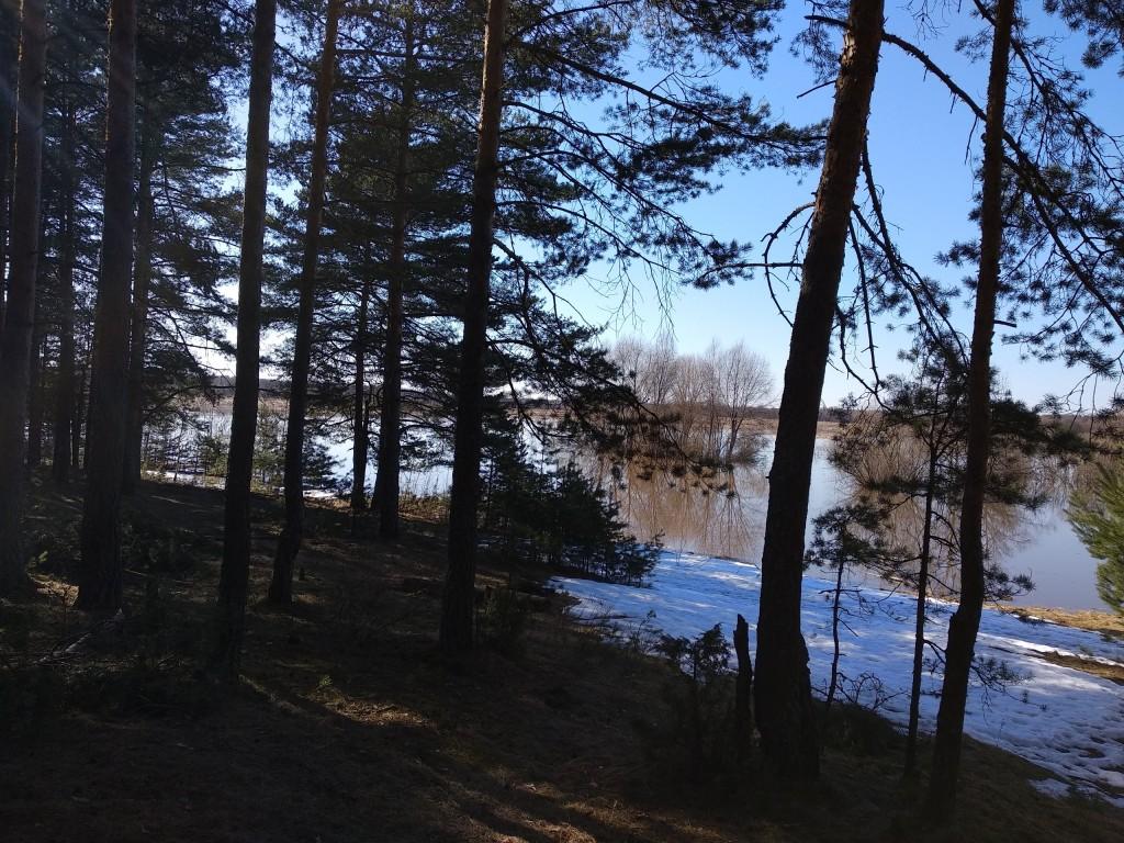 Разлив Клязьмы близ д. Любцы, Ковровский район 05
