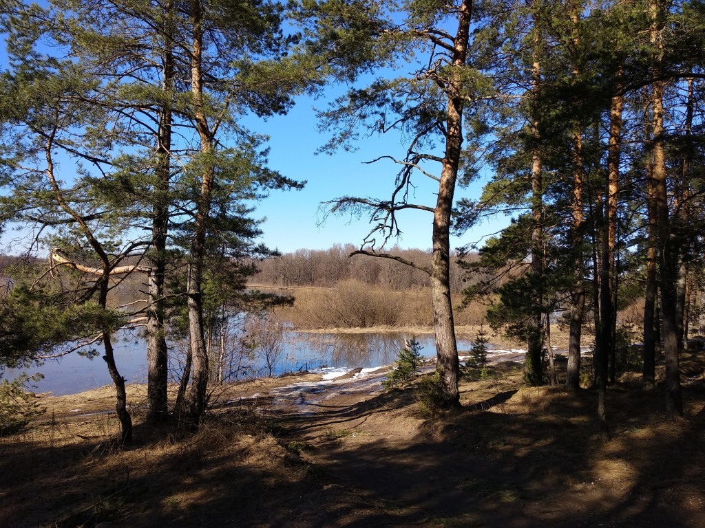Разлив Клязьмы близ д. Любцы, Ковровский район 06