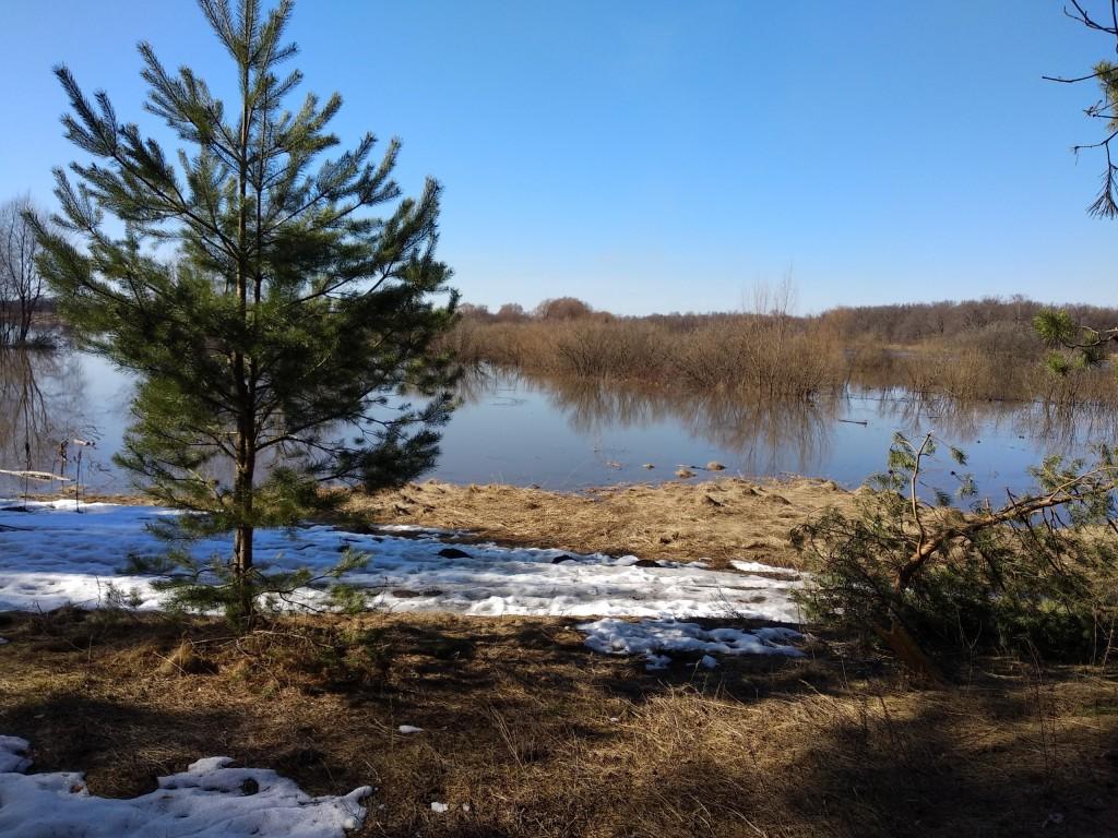 Разлив Клязьмы близ д. Любцы, Ковровский район 09