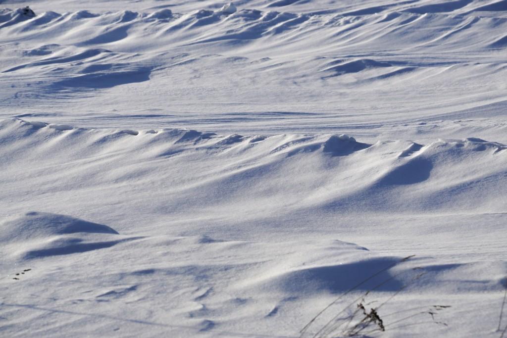 Снежные волны на Суздальских полях 03