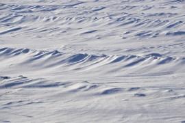 Снежные волны на Суздальских полях