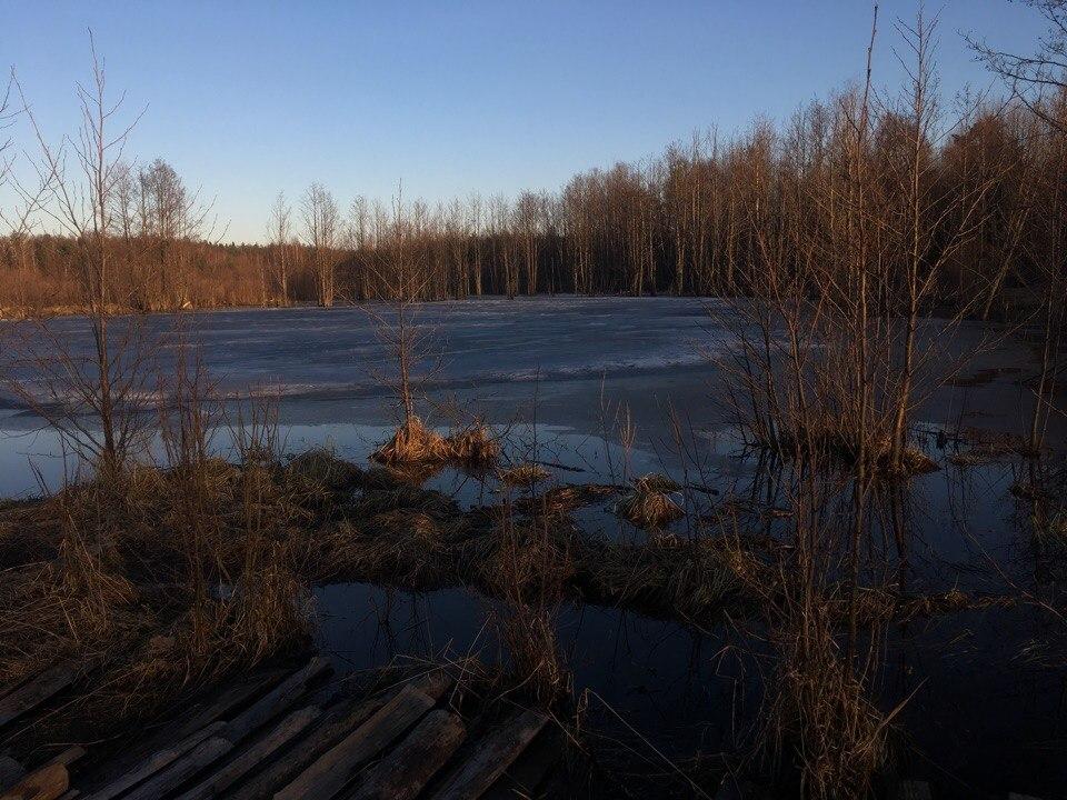 Судогодский район, Деревня Новая, ручей Ястреб 05