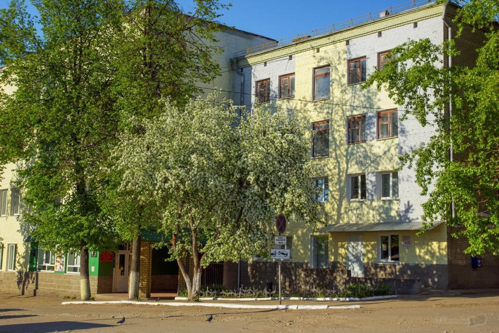 Весна в Коврове, 2018 01