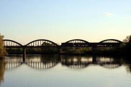 Дубовая роща у арочного железнодорожного моста во Владимире