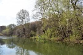 Река Лыбедь в апреле и мае.
