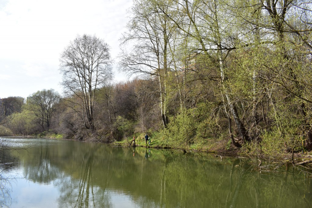 Река Лыбедь в апреле и мае 01