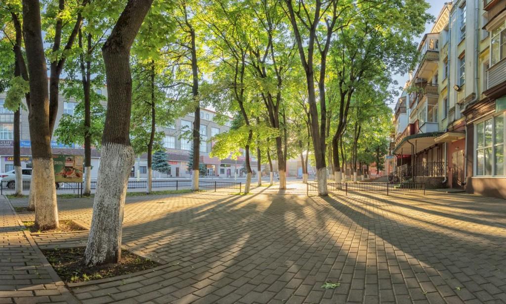 Весеннее утро в Александрове. 26.05.2018 02