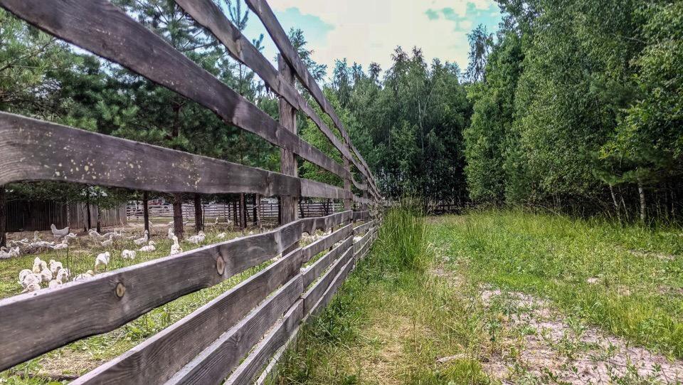 Велопутешествие в с.Антилохово, Владимирская область 06