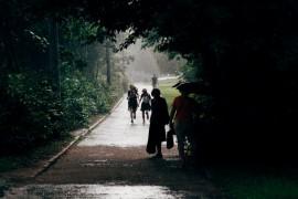 Июльский дождь во Владимире