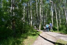Микрорайон Лесной во Владимире