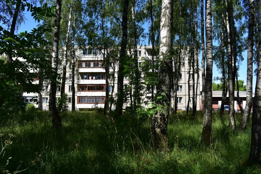 Микрорайон Лесной во Владимире 03