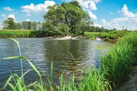 Река Судогда в районе деревни Лаврово