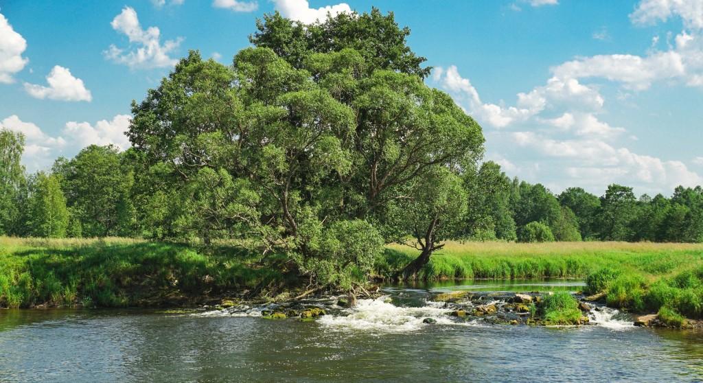 Река Судогда в районе деревни Лаврово 02