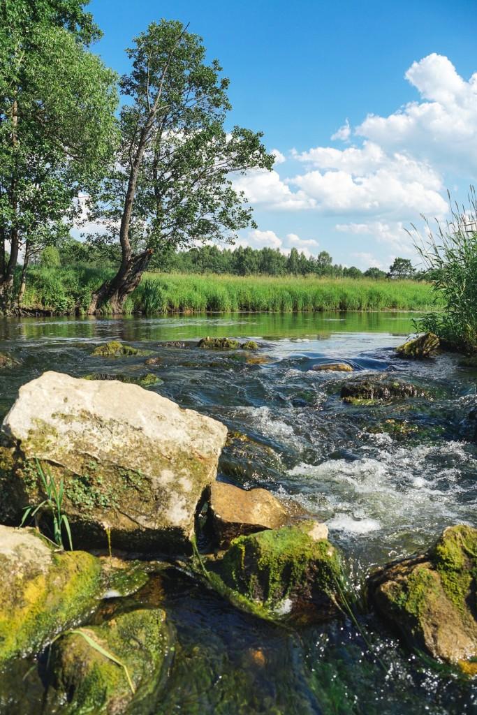 Река Судогда в районе деревни Лаврово 06